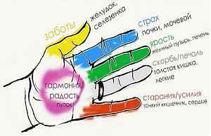 Здоровье на пальцах