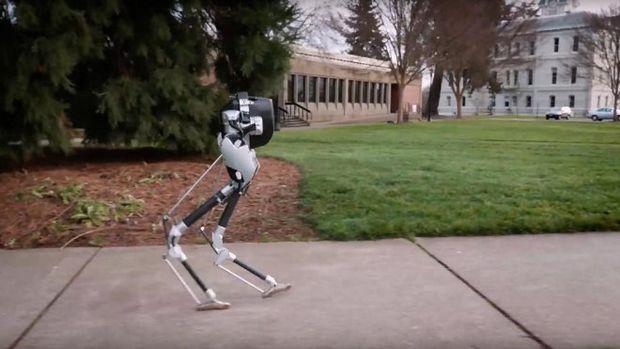 Двуногий Робот Cassie