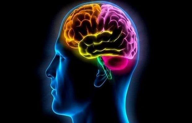 Время года тоже влияет на наши умственные способности