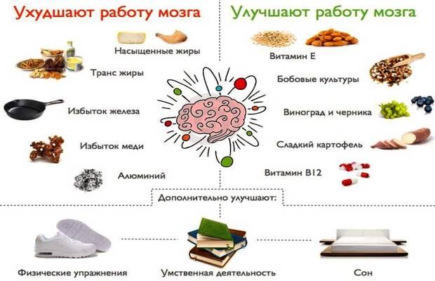 Нейропитание - продукты для мозга