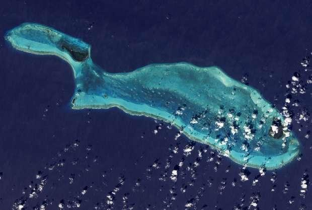 Система барьерных рифов Белиза покрывает более 200 000 акров