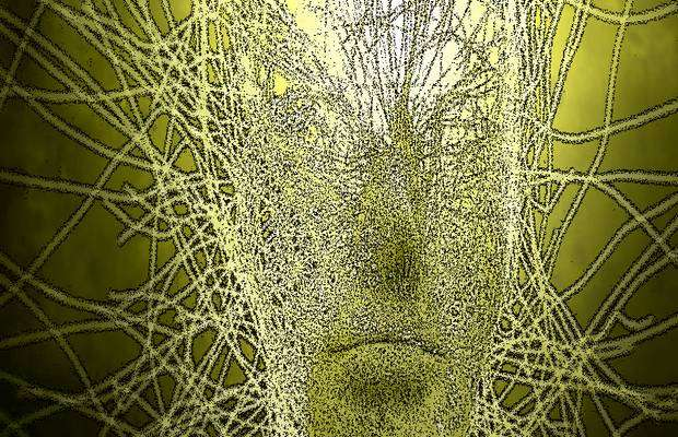 ИИ создал систему компьютерного зрения