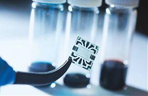 Прозрачная центральная область является солнечной батареей, а токопроводящие графеновые контакты расположены по краям
